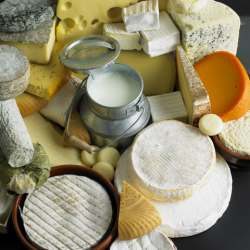 culturing milk for cheese
