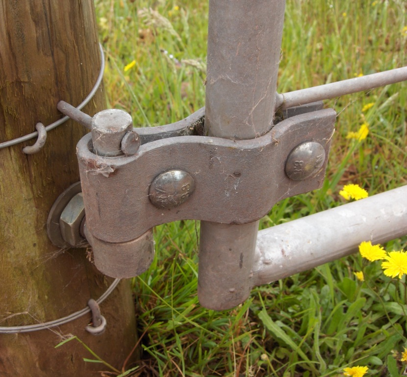 Basic Yards For Handling Up To 5 Cattle Or 30 Sheep Lsb