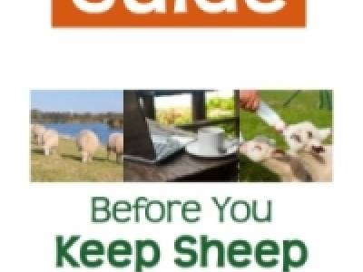 Before You Keep Sheep