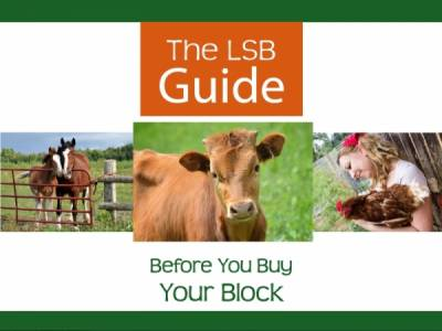 Before You Buy Your Block